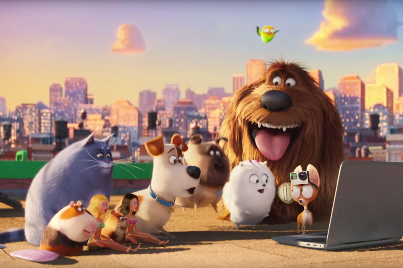 """Дата выхода """"Тайная жизнь домашних животных 3"""""""